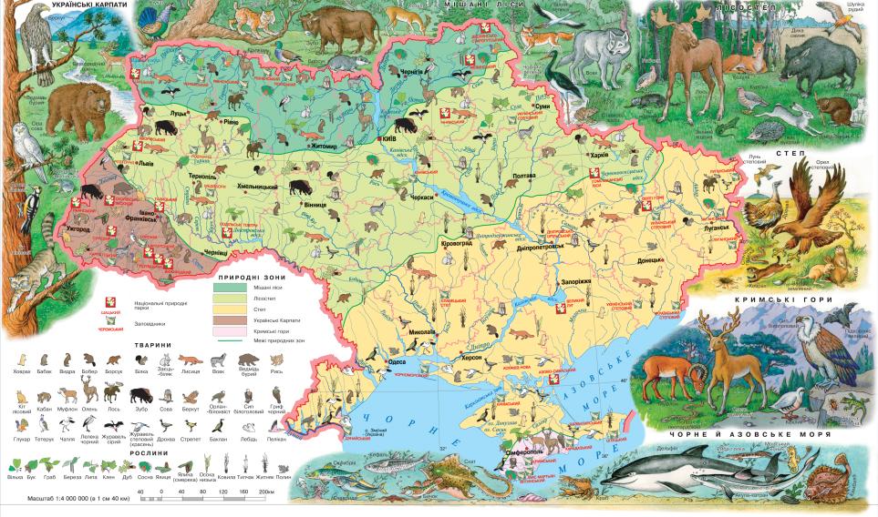 Карта популяции животных в Украине